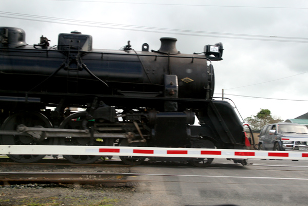 08-august-8-steam-train3