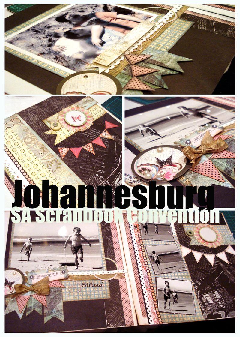 11  Sept 13 JHB mosaic